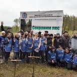 В Нижегородской области активисты «Единой России» высадили деревья в рамках акции «Сохраним лес» и партпроекта «Чистая страна»