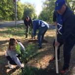 Волонтеры Орска привели в порядок территорию парка Строителей