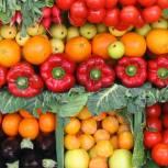 Россия наращивает объемы производства овощей