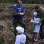В акции «Наш лес. Посади своё дерево» приняли участие воскресенские единороссы