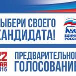 Зарегистрированы еще два кандидата предварительного голосования