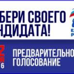 На участие в предварительном голосовании по выборам в Госсовет Коми заявились еще три человека, в Госдуму - один