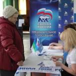 В Сыктывкаре подвели итоги предварительного голосования по довыборам в Совет города