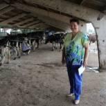В Кораблинском районе активно развивается сельское хозяйство
