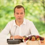 Премьер-министр РФ призывает найти баланс между экспортом и внутренним потреблением зерна