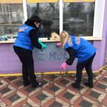 Молодогвардейцы в Ступино вышли на акцию по ликвидации надписей, содержащих информацию о распространении наркотиков