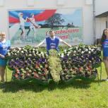 Сапожковские партийцы высадили цветы