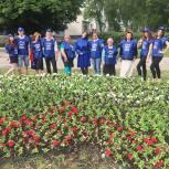 Партийцы Московского района украсили Рязань петуньями в цвет российского флага