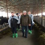 Владимир Якушев посетил крестьянско-фермерское хозяйство в Нижнетавдинском районе
