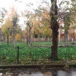 Орехово-Зуевские сторонники Партии провели мониторинг сухостоя на территории города