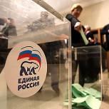 Подмосковное отделение партии «Единая Россия» проводит предварительное голосование в 9 муниципалитетах