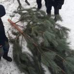 Первомайский район: Андрей Долов выполняет наказы самых маленьких жителей округа