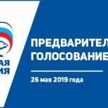 26 мая — Единый день предварительного голосования
