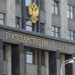 Госдума приняла в третьем чтении законопроект о присвоении статуса ветерана дагестанским ополченцам