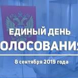 Предварительная явка на выборах в МГД составила около 22% по итогам обработки 22,3% протоколов