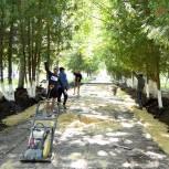 Третью часть парка в Новомичуринске обновят к ноябрю