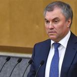 Володин призвал вовлекать регионы в диалог по программе развития сел