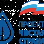 Более 500 зеленых насаждений высажены в Иванове благодаря партийному проекту «Чистая страна»