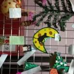 В Койгородском районе единороссы провели конкурс новогодних игрушек