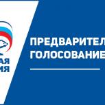 Около 1800 человек сделали свой выбор в предварительном голосовании «Единой России»