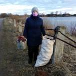 В поселке Кикнур берег пруда стал чище