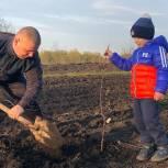 Акцию «Сад памяти» поддержали партийцы Александро-Невского района