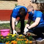 В честь 75-летия Победы перед домом фронтовика высадили 75 цветов
