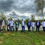 Партийцы Павловского Посада присоединились к акции «Сад Памяти»