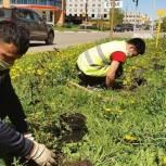 150 кустарников высадили в Реутове в рамках международной акции «Сад памяти. Лес Победы»