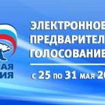 В Рязанской области продолжается электронное предварительное голосование «Единой России»