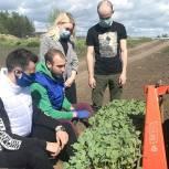 Луховицкий координатор партпроекта «Российское село» провел для молодежи мастер-класс по посадке овощей
