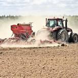 Хозяйства Томской области завершили сев зерновых, зернобобовых и овощей