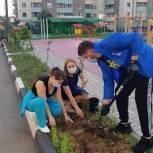 Одинцовские партийцы высадили деревья и многолетние цветы в Трехгорке
