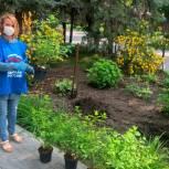 Энгельсские партийцы провели озеленение парка «Покровский»