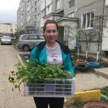 Депутат Вахов помог благоустроить двор
