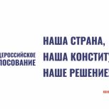 Отмечена высокая активность жителей региона в Общероссийском голосовании