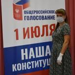 Активисты местных отделений партии отметили высокий уровень организации голосования