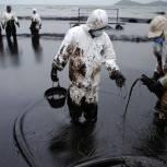 Владимир Пушкарев: закон о предотвращении нефтеразливов обяжет компании возмещать вред в полном объеме