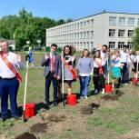 Тобольские единороссы приняли участие в высадке деревьев в аллее Выпускников