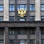 Володин поручил запросить информацию о наличии двойного гражданства у депутатов Госдумы