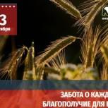 В Омской области завершена процедура выдвижения кандидатов на выборы в органы местного самоуправления