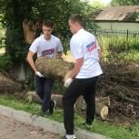 Дмитровское партийцы и молодогвардейцы устранили последствия урагана в парке имени Лямина