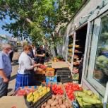 В Саратове начали проверять арбузы и дыни на наличие нитратов