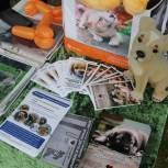 Ольга Полякова: Мы благодарны всем, кто принял и принимает участие в акции «Лучший друг»