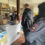 В Сысерти прошел совместный рейд полиции и партпроекта «Народный контроль»