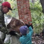 В Первоуральске депутат Маштаков стал инициатором восстановления парка