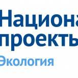В Ивановской области в рамках акции «Сохраним лес» высадят около полумиллиона деревьев