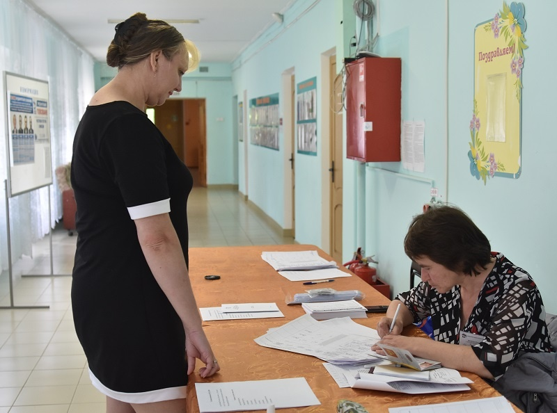 Предварительное голосование 2019