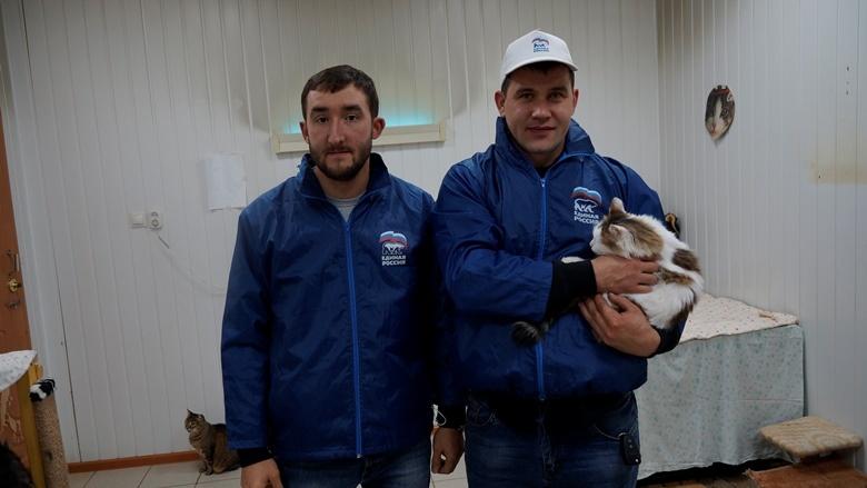 Приют «Кот и Пес» города Ижевска